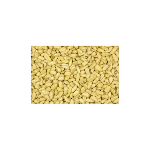 Pinjansiemenet, Siperia  1 kg LUOMU