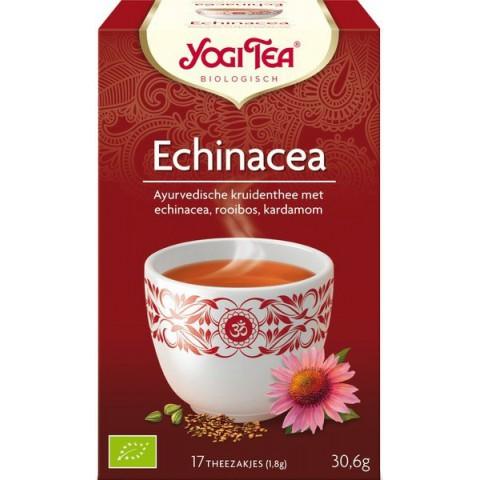 Yogi tee Echinacea 17 pussia LUOMU